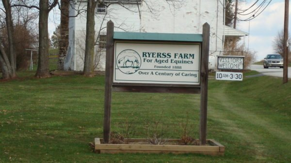 ryerrs farm aged equines retire