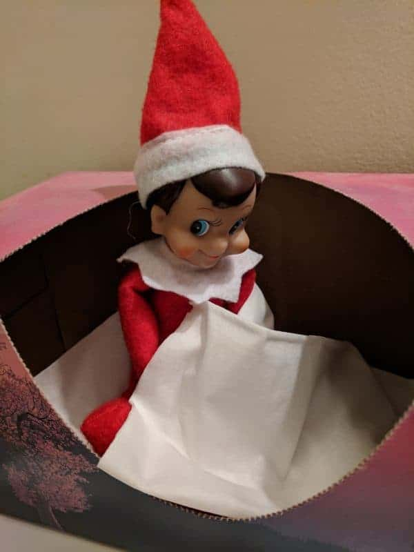 Elf on the Shelf in the Bathroom