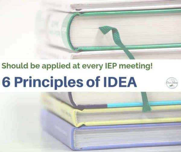 6 principles of IDEA