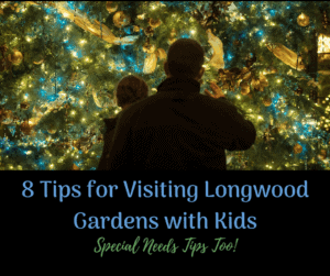 8 Tips for Visiting Longwood Gardens with Kids and special needs tips as well parent and child looking at christmas tree