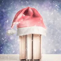 50 Best Christmas Books for Kids |  Teens | Tweens
