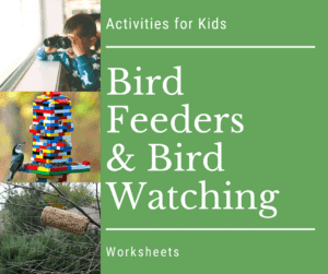bird watching feeders for kids