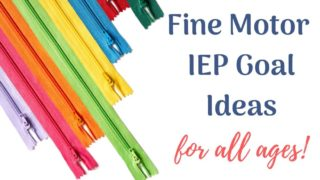 {Fine Motor Skills} 50 IEP Goal Ideas for all ages.