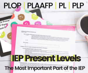 iep present levels