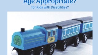 Who gets to decide what is age appropriate for a disabled person?