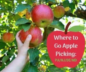 apple picking in nj and pa