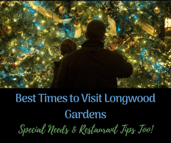 a father and son chose the best time to visit longwood gardens