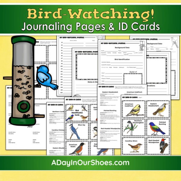 Bird Watching For Kids 2021 | Free Bird Watching Journal