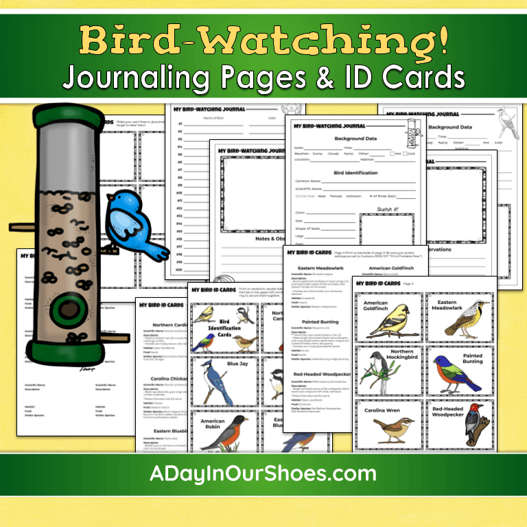 Bird Watching for Kids | Free Bird Watching Journal and Activities for all Ages