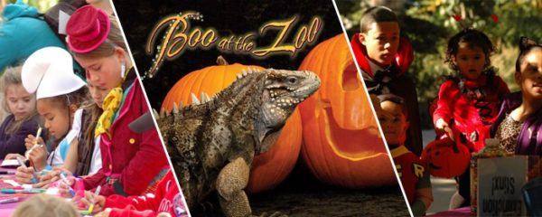 boo at the zoo philadelphia