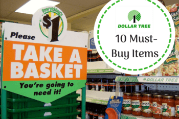 dollar tree store photo must buy items from the store