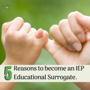 reasons become an IEP educational surrogate coming to agreement by locking fingers together