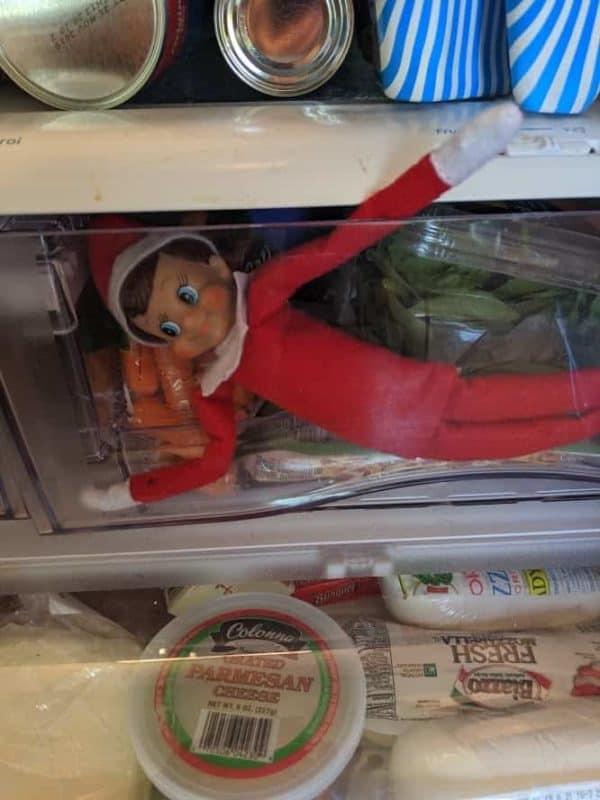 elf on the shelf in refrigerator