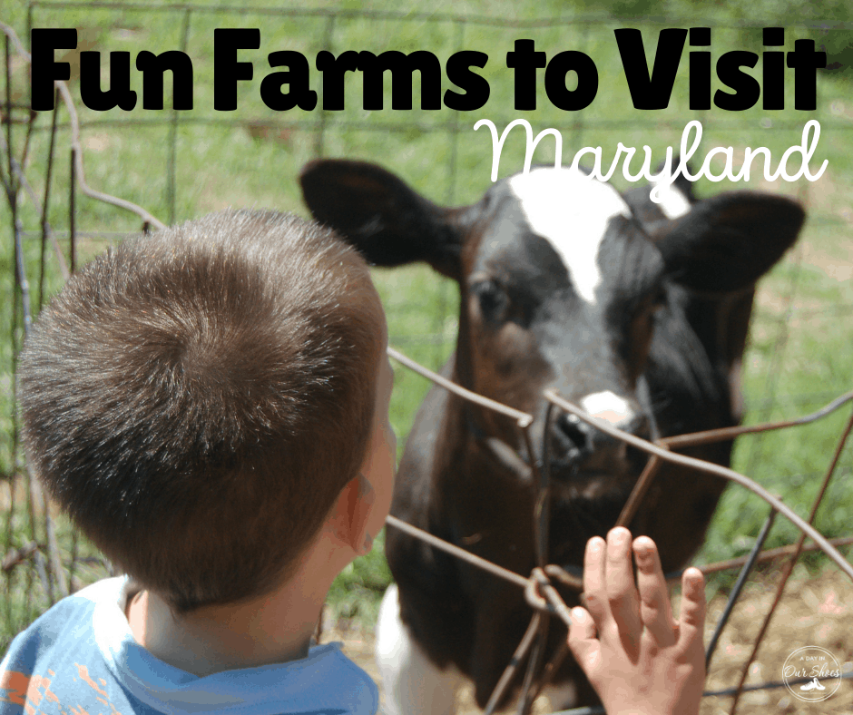 fun farms to visit in maryland