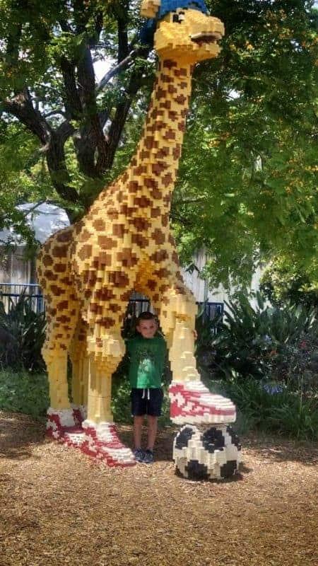 giraffe at legoland