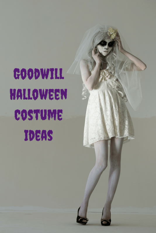 goodwill halloween costume ideas