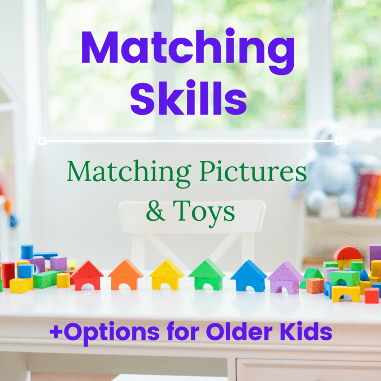 Developing Matching Skills | Matching Pictures | Printable |  for Older Kids