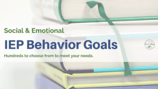 100s of Measurable Behavior Goals for an IEP.