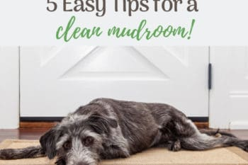 mudroom tips to keep it clean dog laying on floor in front of a door