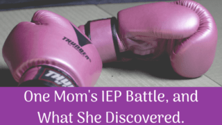 One Mom's IEP Battle, and What She Discovered.