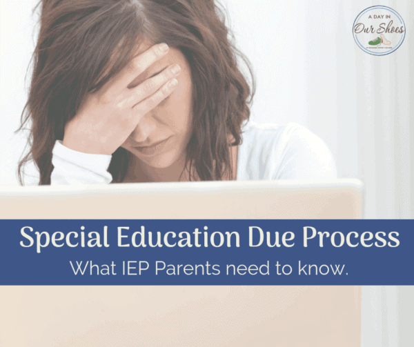 special education due process