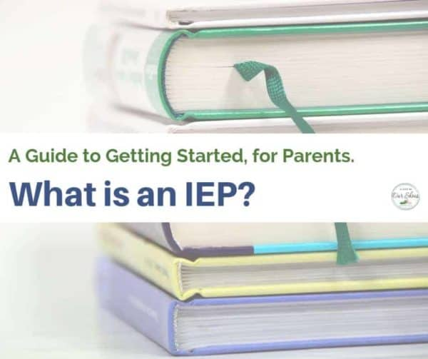 what is an IEP guide to getting started book stack